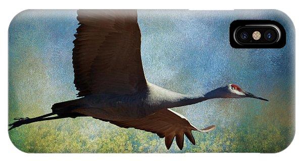 Sandhill Crane Art IPhone Case