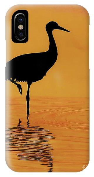 Sandhill - Crane - Sunset IPhone Case