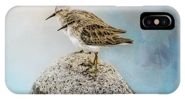 Sandpipers On A Rock IPhone Case
