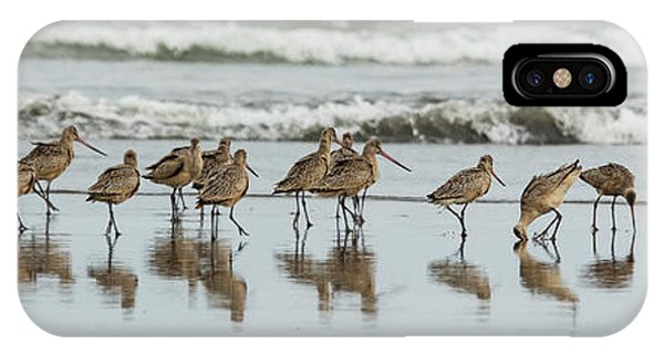 IPhone Case featuring the photograph Sandpipers Piping by Bob Cournoyer