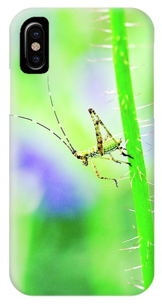 IPhone Case featuring the photograph Say Hello To My Little Green Insect Friend by Don Northup