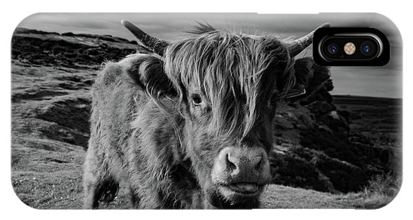 Saying Hello To A Highland Cow At Baslow Edge Black And White IPhone Case