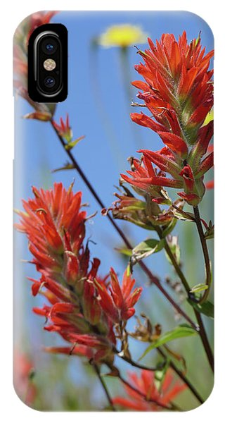 Scarlet Indian Paintbrush At Mount St. Helens National Volcanic  IPhone Case