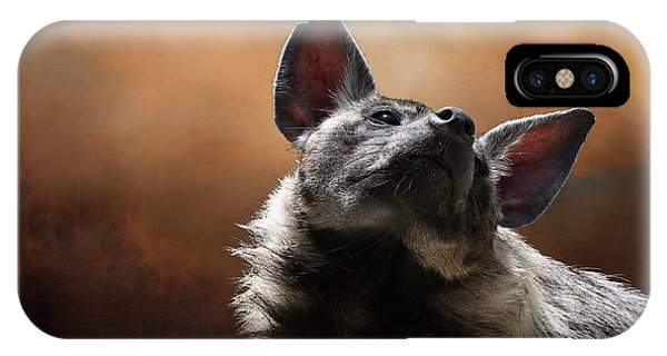IPhone Case featuring the photograph Scenting The Air - Striped Hyena by Debi Dalio