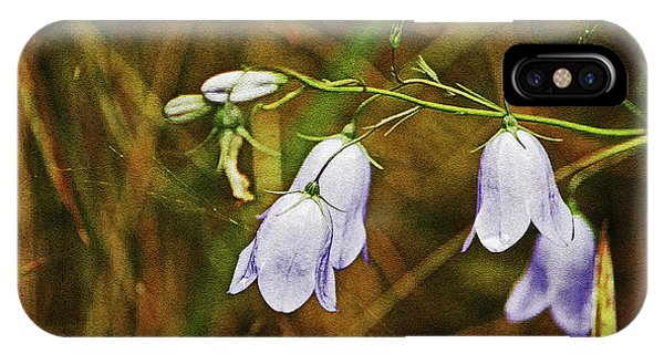 Scotland. Loch Rannoch. Harebells In The Grass. IPhone Case