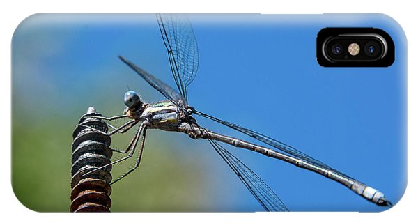 Screwy Dragonfly IPhone Case