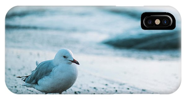 IPhone Case featuring the photograph Seagull On The Beach. by Rob D