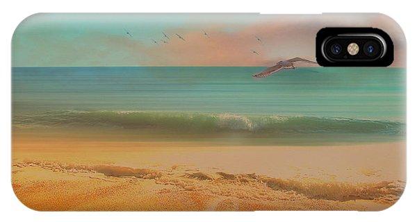 Seagulls Gather At Dusk IPhone Case