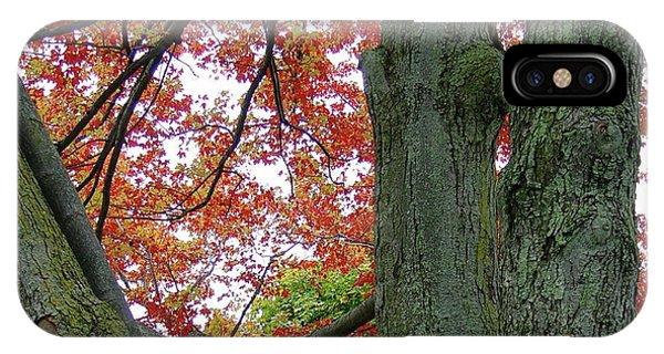 Seeing Autumn IPhone Case