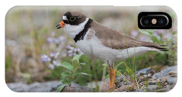 Semipalmated Plover Calling, Creek Bed Phone Case by Ken Archer