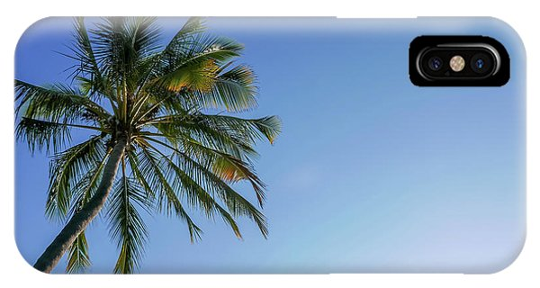 Shades Of Blue And A Palm Tree IPhone Case