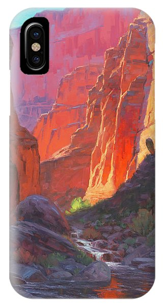 Canyon iPhone Case - Shadow Barrel  by Cody DeLong