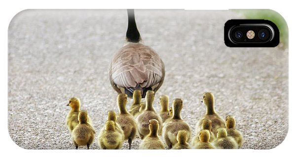 Goslings iPhone Case - Shallow Dof On Babies A Cute Family Of by Annette Shaff