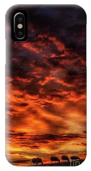 iPhone Case - Sheep Grazing At Dawn  by Thomas R Fletcher