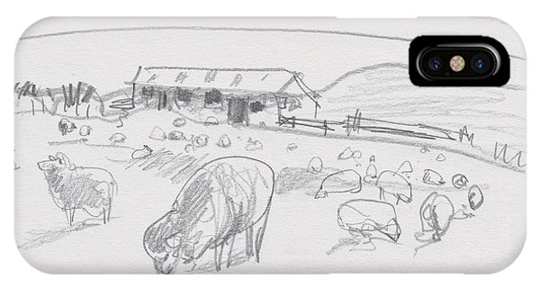 Sheep On Chatham Island, New Zealand IPhone Case