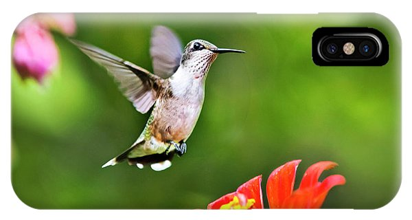 Beautiful Hummingbird iPhone Case - Shimmering Breeze Hummingbird by Christina Rollo