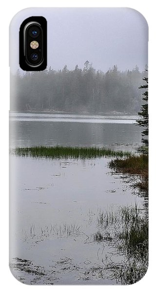 Ship Harbor Nature Trail, Acadia National Park IPhone Case