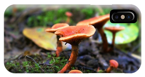 IPhone Case featuring the photograph Shrooms by Candice Trimble