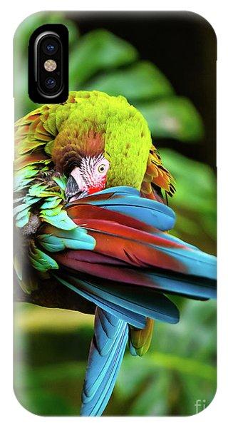 Shy Parrot IPhone Case