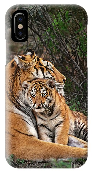 Siberian Tiger Mother And Cub Endangered Species Wildlife Rescue IPhone Case