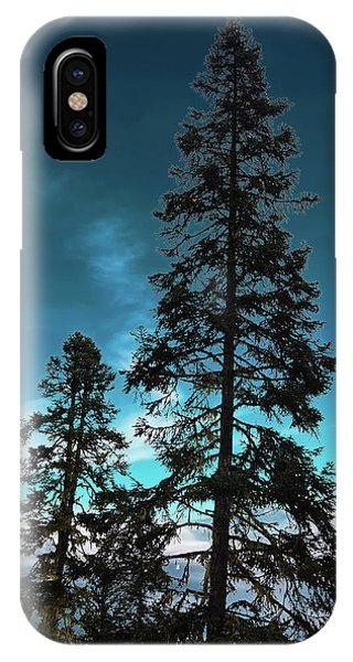 Silhouette Of Tall Conifers In Autumn IPhone Case
