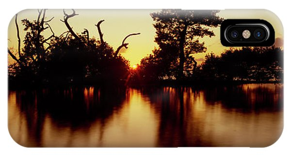 Oyster Bar iPhone Case - Silhouette Of Trees At Sunset, Oyster by Panoramic Images