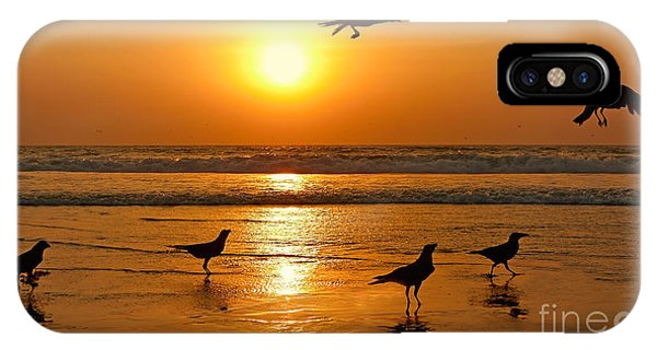 Crow iPhone Case - Silhouettes Of Birds On Sunset. Goa by Istomina Olena