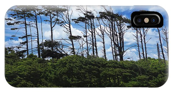 Silhouettes Of Wind Sculpted Krumholz Trees  IPhone Case