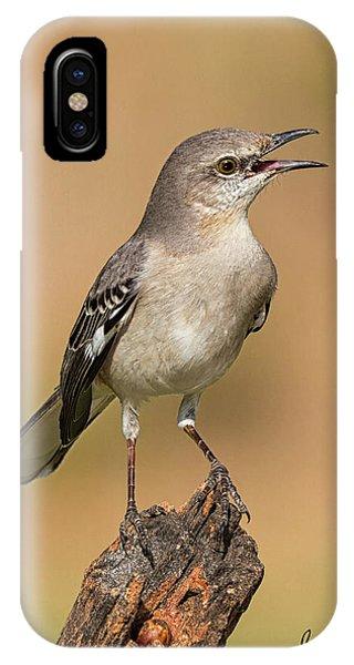 Singing Mockingbird IPhone Case