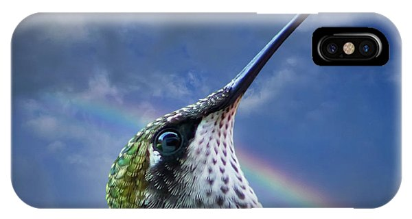 Hummingbirds iPhone Case - Sky Trooper by Jerry LoFaro