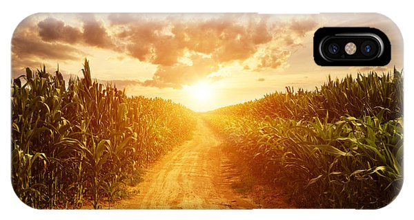 Farmland iPhone Case - Skyline And Corn Field by Zhu Difeng
