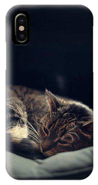Cute Kitten iPhone Case - Sleepy Cat by Cambion Art