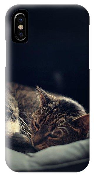 Kitten iPhone Case - Sleepy Cat by Cambion Art