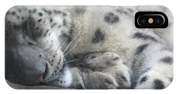 Sleeping Cheetah IPhone Case