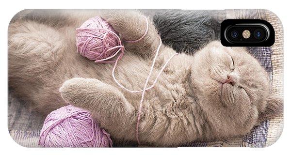 Cute Kitten iPhone Case - Sleeping Kitten Rare Color Lilac by Liliya Kulianionak