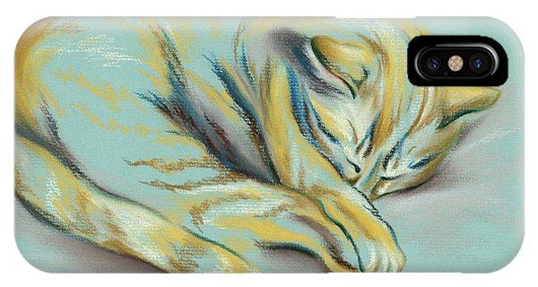 Sleeping Tabby Kitten IPhone Case