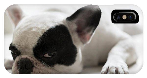 Small Dog iPhone Case - Sleepy French Bulldog by Kittibowornphatnon