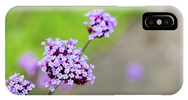 IPhone Case featuring the photograph Small Purple Flowers by Scott Lyons