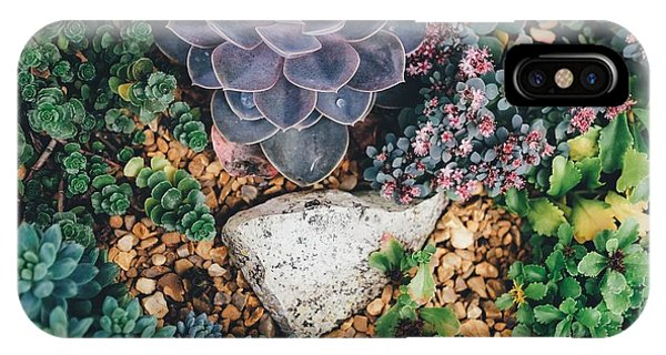 Small Succulent Garden IPhone Case