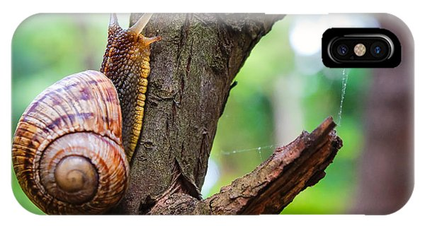 Eating iPhone Case - Snail On The Tree In The Garden. Snail by Bozhena Melnyk