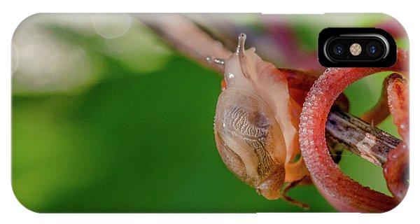 Snails Pace IPhone Case