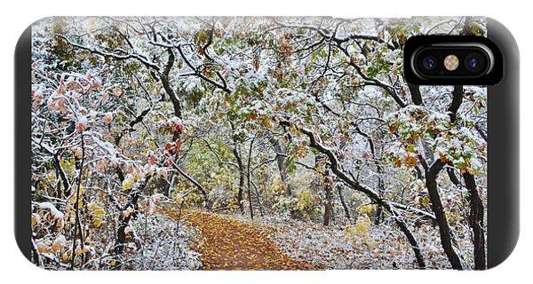 Snow Greets Autumn IPhone Case