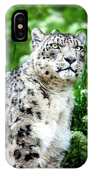 Snow Leopard, Leopard Art, Animal Decor, Nursery Decor, Game Room Decor,  IPhone Case