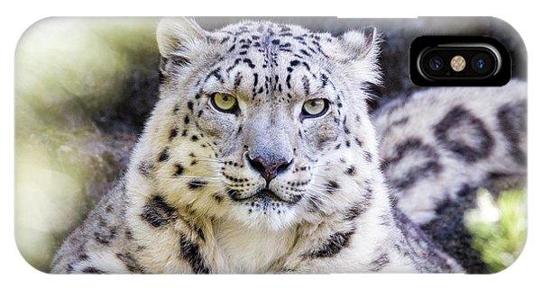 iPhone Case - Snow Leopard by Jane Rix