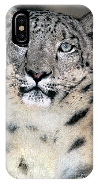 Snow Leopard Portrait Endangered Species Wildlife Rescue IPhone Case