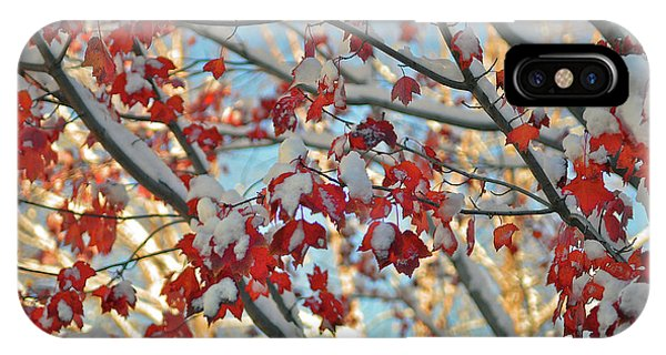 Snow On Maple Leaves IPhone Case