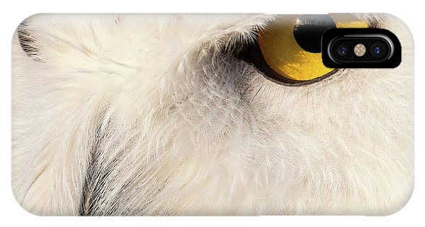 Snow Owl Eye IPhone Case