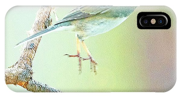 Snowbird Jumps From Tree Branch IPhone Case