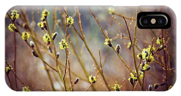 Snowfall On Budding Willows IPhone Case