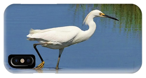 IPhone Case featuring the photograph Snowy Egret by Debbie Stahre